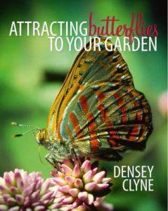 Densey Clyne book cover