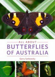 all about butterflies of australia garry sankowsky